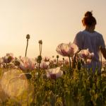 Tipps aus der Kinesiologie und Psychologie für seelische Balance